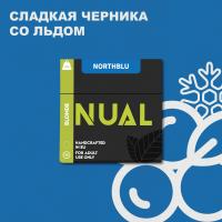 Табак для кальяна Nual North Blu (Нуал Черника со Льдом) 100 грамм
