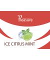 Табак Pleasure Ice Citrus Mint (Плежер Айс Цитрус Мята) 100 грамм тестер - Фото 2